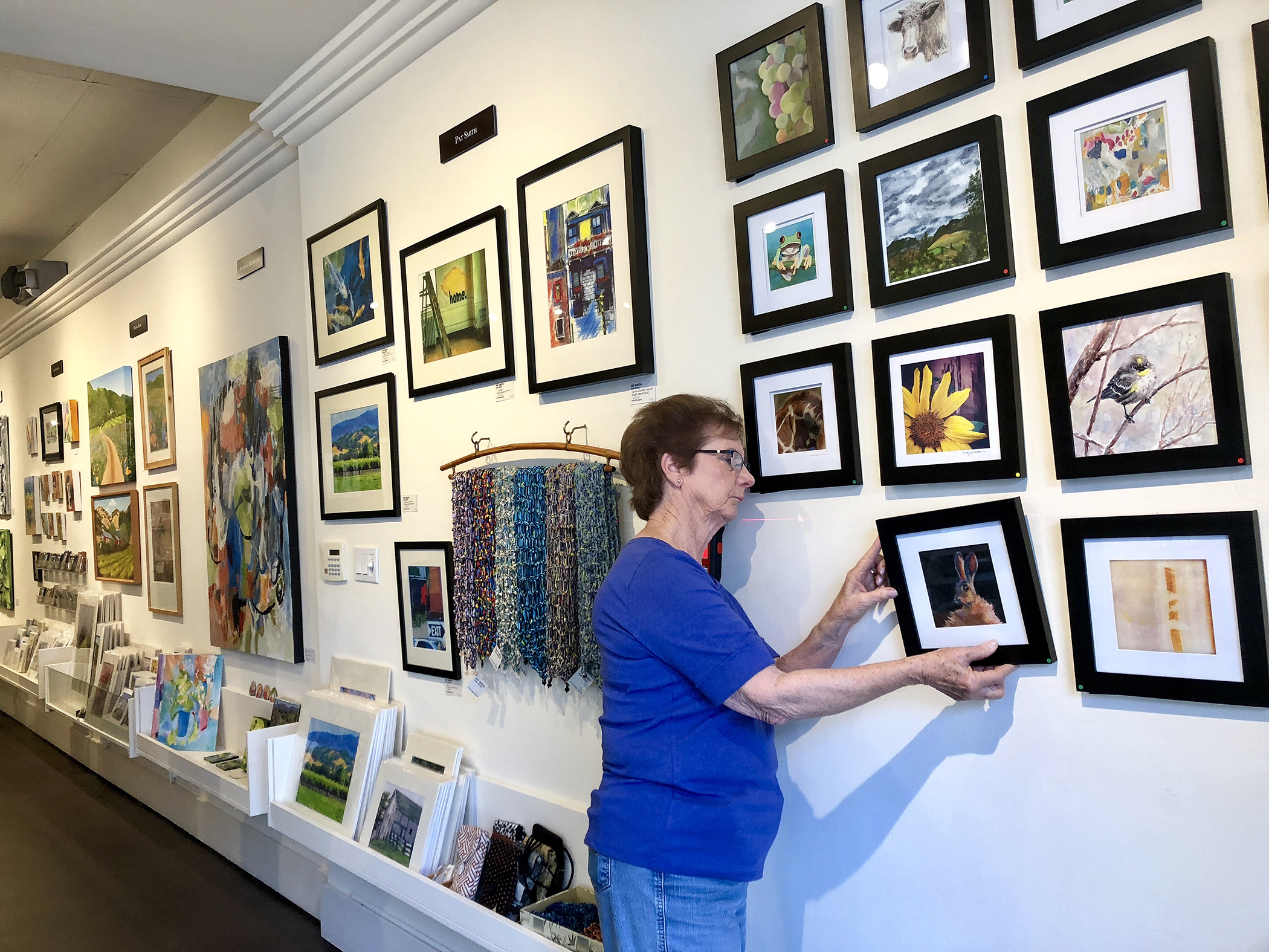 Jean Dillon hanging paintings at the Art Gallery